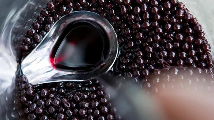 Самбукол - экстракт черной бузины